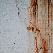 Rust Removal Services